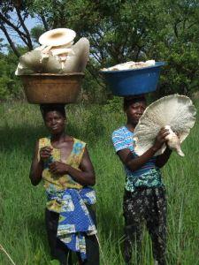 Mushroom season in Cangandala