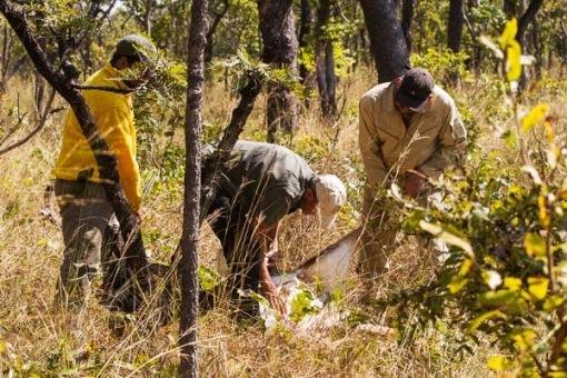 Our main concern was assisting the poor girl; A nossa maior preocupação era ajudarmos a pobre fêmea