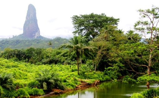 The island is formed by two extinct volcanic complexes, one of which is the  Pico de Sao Tome, in background above.