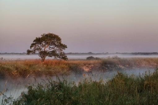 Luando river at dawn; Madrufada no rio Luando.