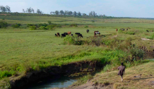 ... to gentle, rolling grasslands. Photos courtesy Huambo Atlas.