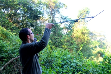 Ricardo Lima spent 4 weeks radio tracking endemic Gabela Akalat and Bush-shrike in Kumbira.
